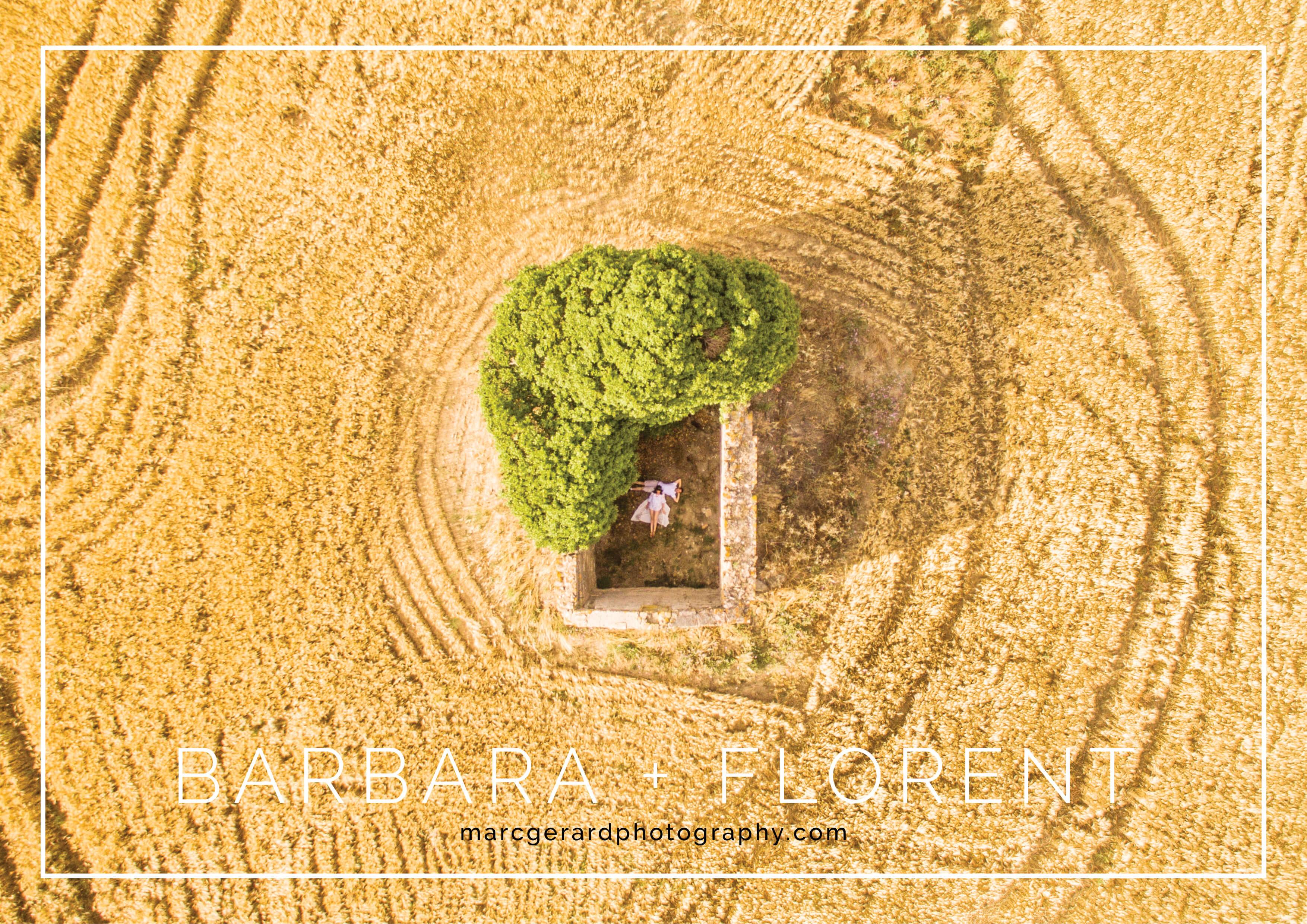 Drone champ de blé