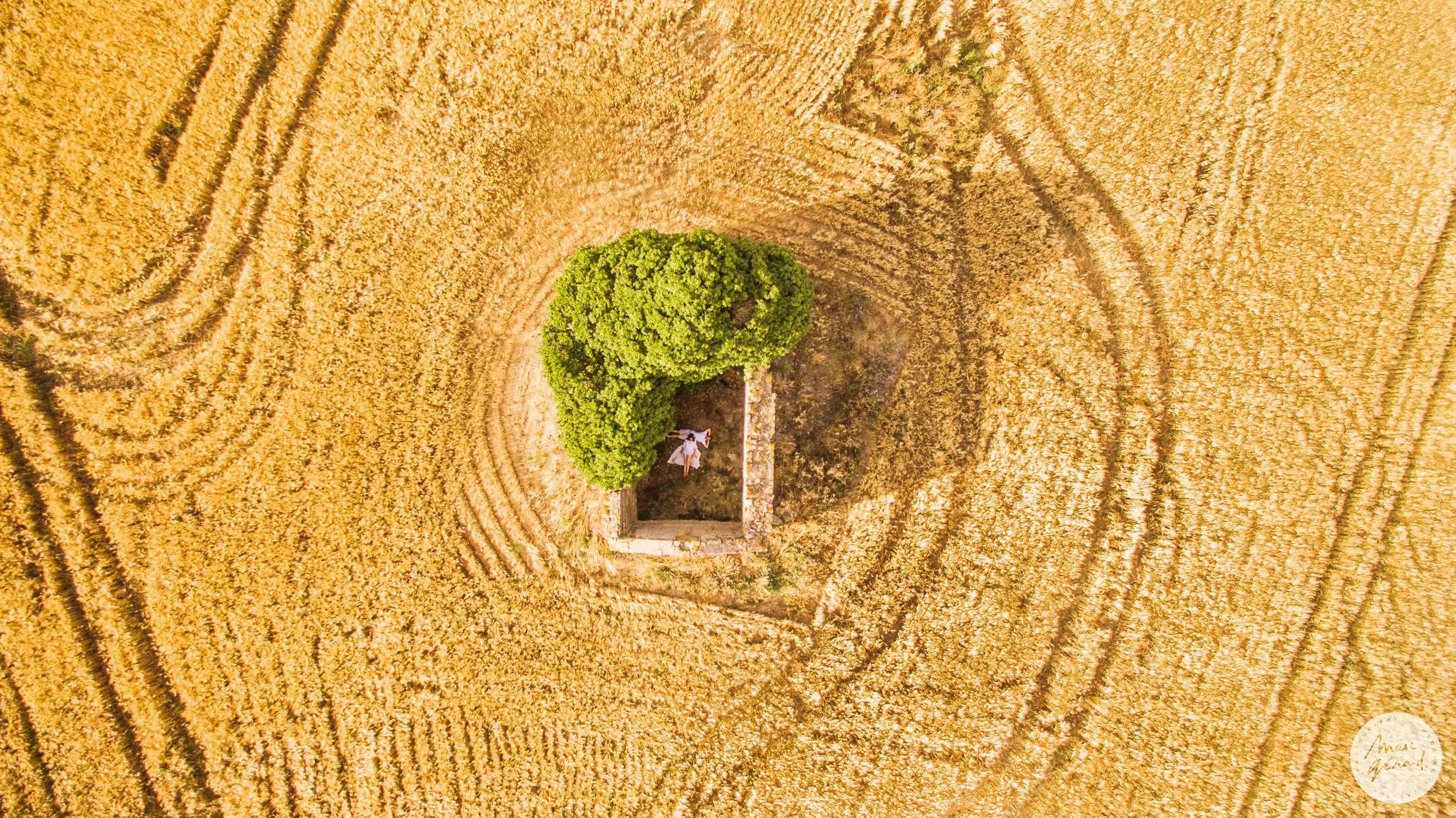 Photo de couple au drone dans un champs de blé, Béziers